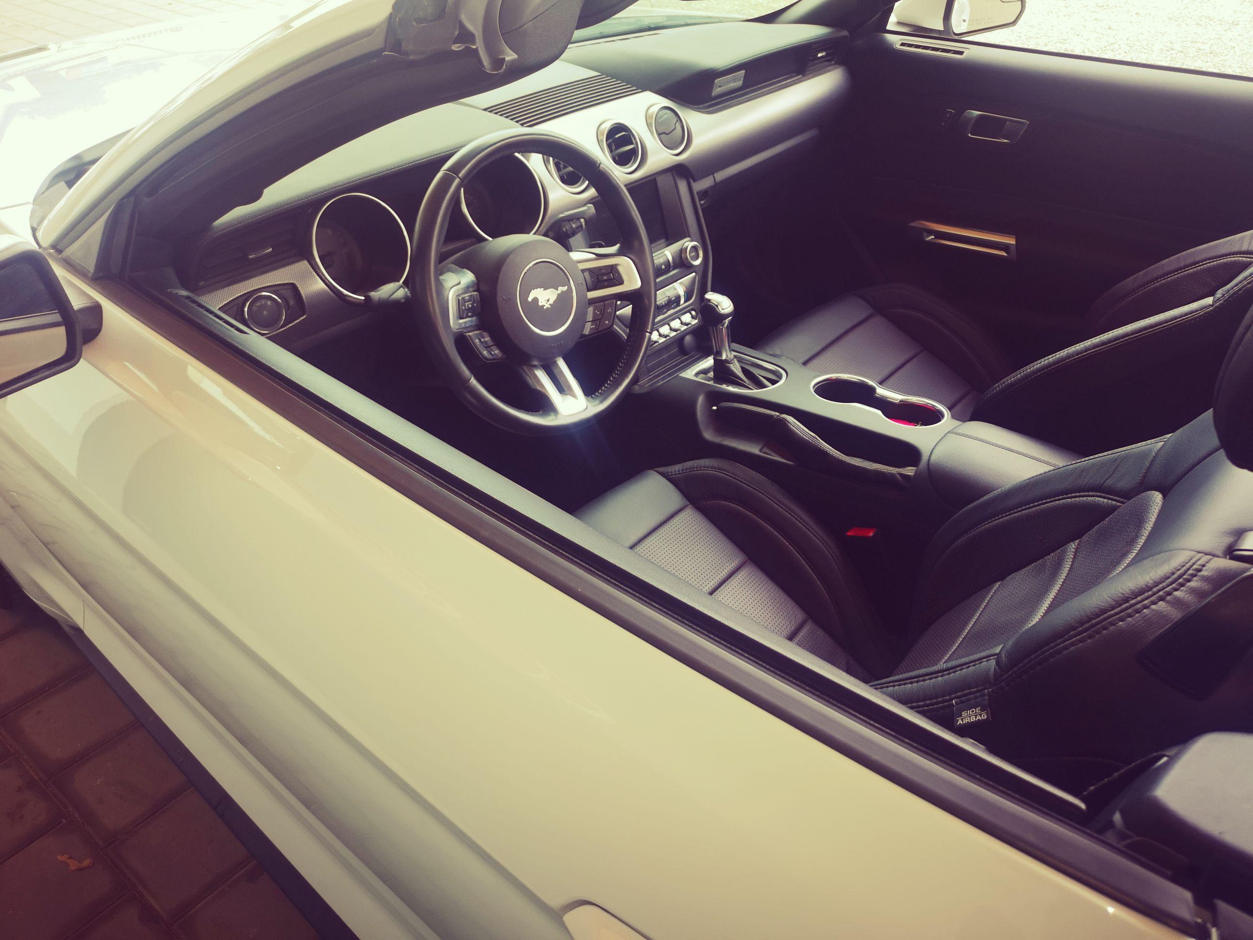 2019 Ford Mustang Cabrio GT premium zu verkaufen mit leder