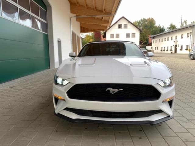 2019 Ford Mustang GT Gebrauchtwagen zu verkaufen